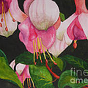 Fuschia Pink Passion Poster by Kimberlee Weisker