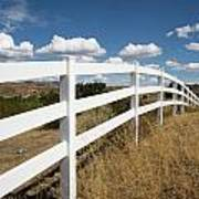 Galloping Fence Poster
