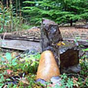 Garden Energy Rocks Poster