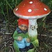 Garden Gnome Under Mushroom Poster