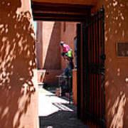 Garden Sculptures Museum Of Art In Santa Fe Nm Poster