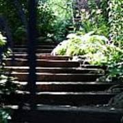 Garden Stairs Poster