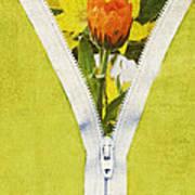 Garden Window Poster