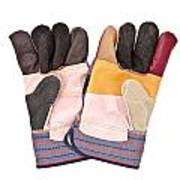 Gardening Gloves Poster by Tom Gowanlock