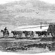 Gauchos, 1858 Poster