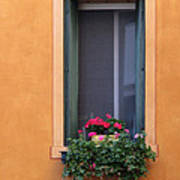 Geraniums In A Yellow Window In Treviso Italy Poster