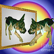 German Shepherd Puppy In Mirror Poster