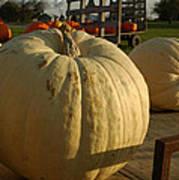 Ghost Pumpkin Poster
