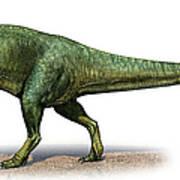 Giganotosaurus Carolinii, A Prehistoric Poster