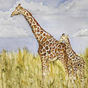 Giraffe And Calf Poster