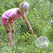 Girl Collects Insects In A Meadow Poster by Ted Kinsman