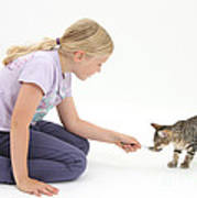 Girl Feeding Kitten From A Spoon Poster
