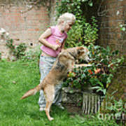 Girl Playing With Dog Poster