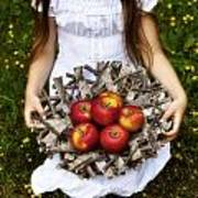 Girl With Apples Poster