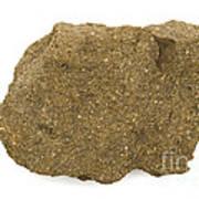 Glauconite Sandstone Poster