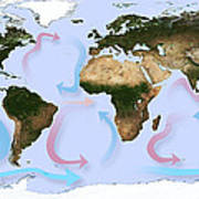 Global Ocean Currents Poster