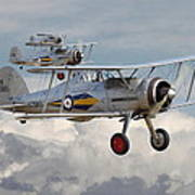 Gloster Gladiator Poster by Pat Speirs