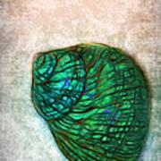 Glowing Seashell Poster
