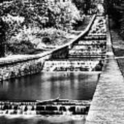 Gnoll Country Park 4 Mono Poster