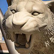 Go Get 'em Tigers Poster