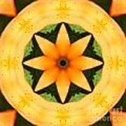 Golden Flower 2 Poster