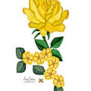 Golden January Rose Poster