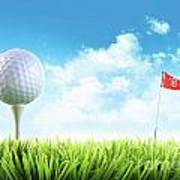 Golf Ball With Tee In The Grass  Poster