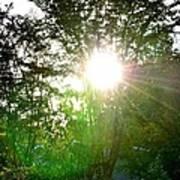 Good Day Sunshine Poster