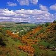 Gortin Valley, Co Tyrone, Ireland Poster