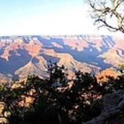 Grand Canyon 61 Poster