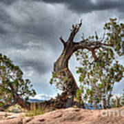 Grand Canyon Facing The Storm Poster