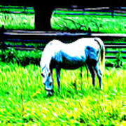 Grazing Horse Poster by Bill Cannon