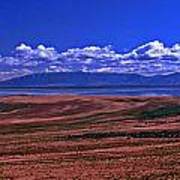 Great Salt Lake And Antelope Island Poster