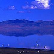 Great Salt Lake From Causeway Poster
