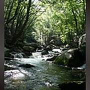 Great Smoky Mountains Np 005 Poster