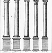 Greek And Roman Columns Poster