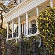 Greek Revival And The Tiny Pink Shoe - Garden District New Orleans Poster