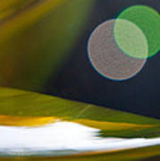 Green And Gold Abstract Poster by Dana Kern