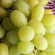 Green Grapes And Purple Mum Poster