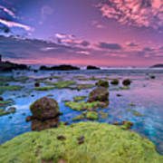 Green Moss Covered Rocks At Sunrise Poster