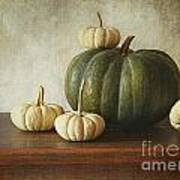 Green Pumpkin And Gourds On Table  Poster by Sandra Cunningham