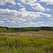 Griggstown Native Grassland Preserve Poster by David Letts