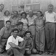 Group Of Jewish Immigrants Harvesting Poster