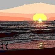 Gulls Enjoying Beach At Sunset Poster