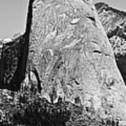 Half Dome Black And White Poster