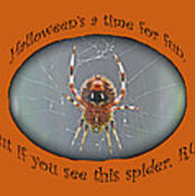 Halloween Greeting Card - Marbled Orb Weaver Spider Poster