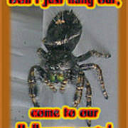 Halloween Party Invitation - Salticid Jumping Spider Poster