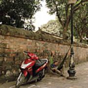 Hanoi Hammock Poster