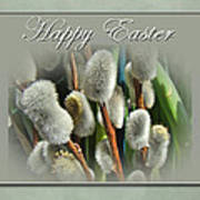 Happy Easter Greeting Card - Pussywillows Poster
