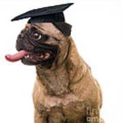 Happy Graduation Poster